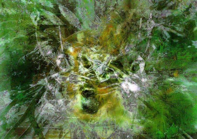 Waldgeist. Digitale Kunst von Julian Fahrenholz