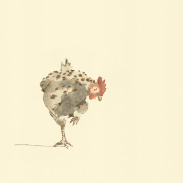 Illustration with watercolour and ink with the title 'Chicken'