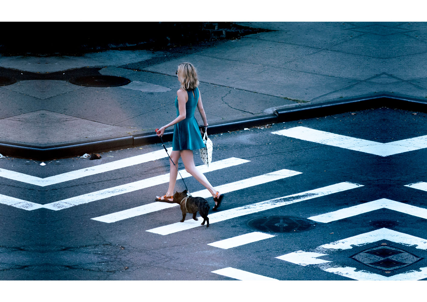Street photography with the title 'NYC'. A woman in a dress crossing the road with her dog on a leash.