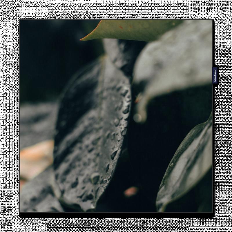 CEBL005_FRAMED_LINEN-BLACK